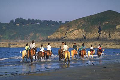 Reiten in der Bretagne. An der Küste und Stränden der Bretagne kann man ausgezeichnet reiten. Ein schöner Ausflug im Urlaub für die Familie.
