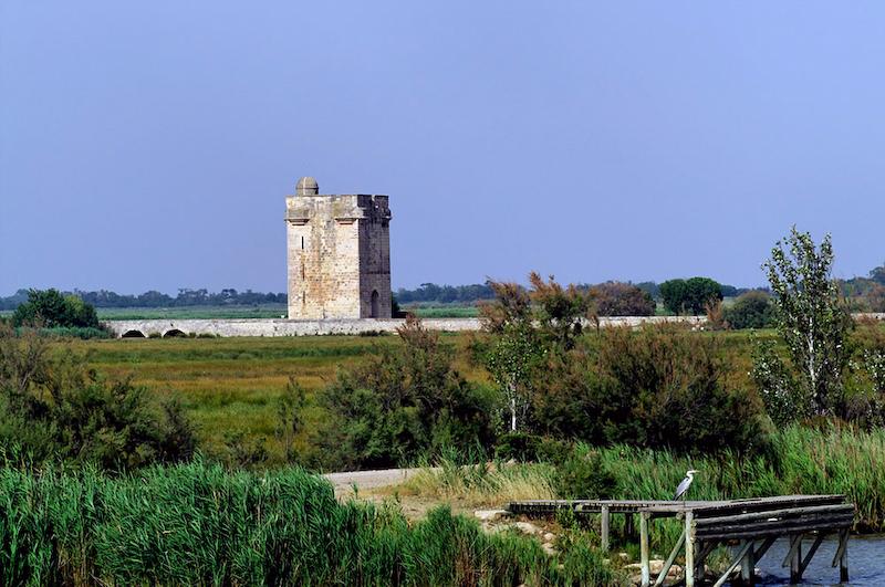 Aigues-Mortes ist eine französische Stadt im Département Gard. Etwa zwei Kilometer nordöstlich der Stadt, befindet sich die Tour Carbonnière (Kohleturm)