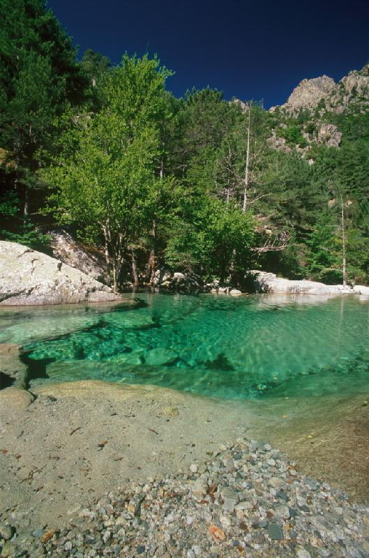 Schluchten im Departement Haute Corse (2B): Gorges de la Restonica.
