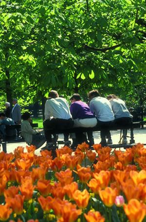 Im Quartier Latin befindet sich der Jardin du Luxembourg, früher war dieser ein königlicher Schlosspark. Heute steht er Besuchern offen.