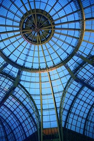 Das Ausstellungsgebäude Grand Palais wurde für die Weltausstellung im Jahr 1900 in Paris errichtet. Heute dient es als Museum um Galerie