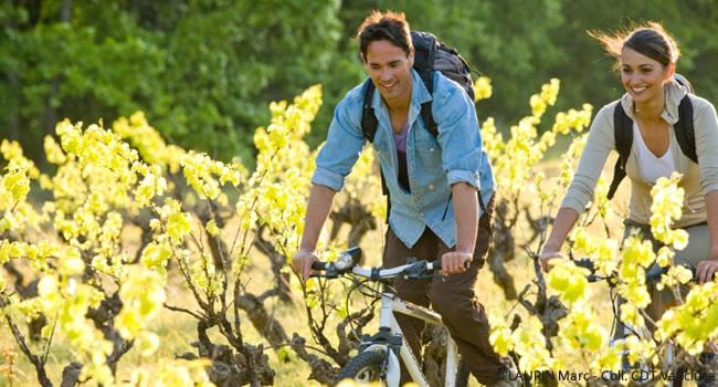 Touren durch Vaucluse Provence
